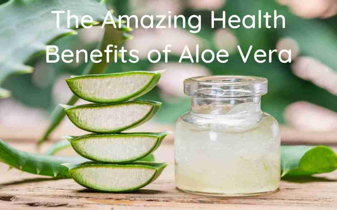 The Many Aloe Vera Health Benefits That You Need To Check Out