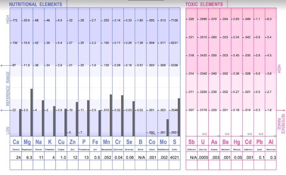 sample HTMA report