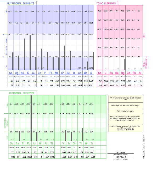 hair mineral analysis sample page