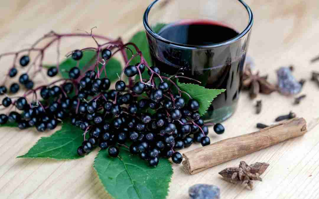 Why You NEED Elderberry Syrup For Colds and Flus in Your Herbal Medicine Cabinet